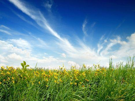 Фото бесплатно синее небо, облака, поля