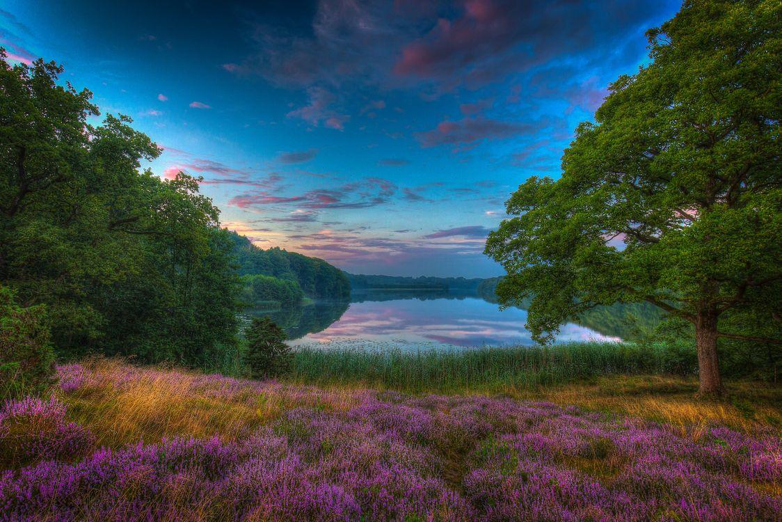 Фото бесплатно Dollerup Hills at Hald Lake, Jutland, Denmark, озеро, сумерки, закат, деревья - на рабочий стол