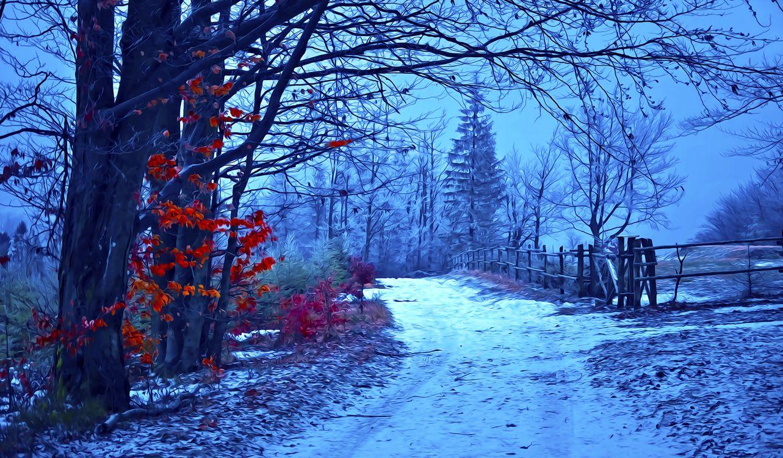 Обои пейзаж, зима, осень картинки на телефон