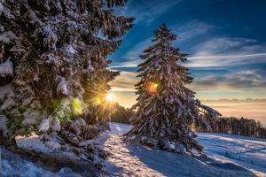 Фото бесплатно Гренхенберг, швейцария, зима