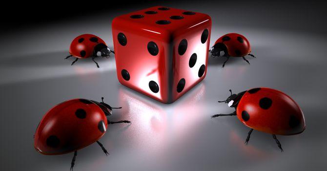 Photo free ladybug, beetle, dice