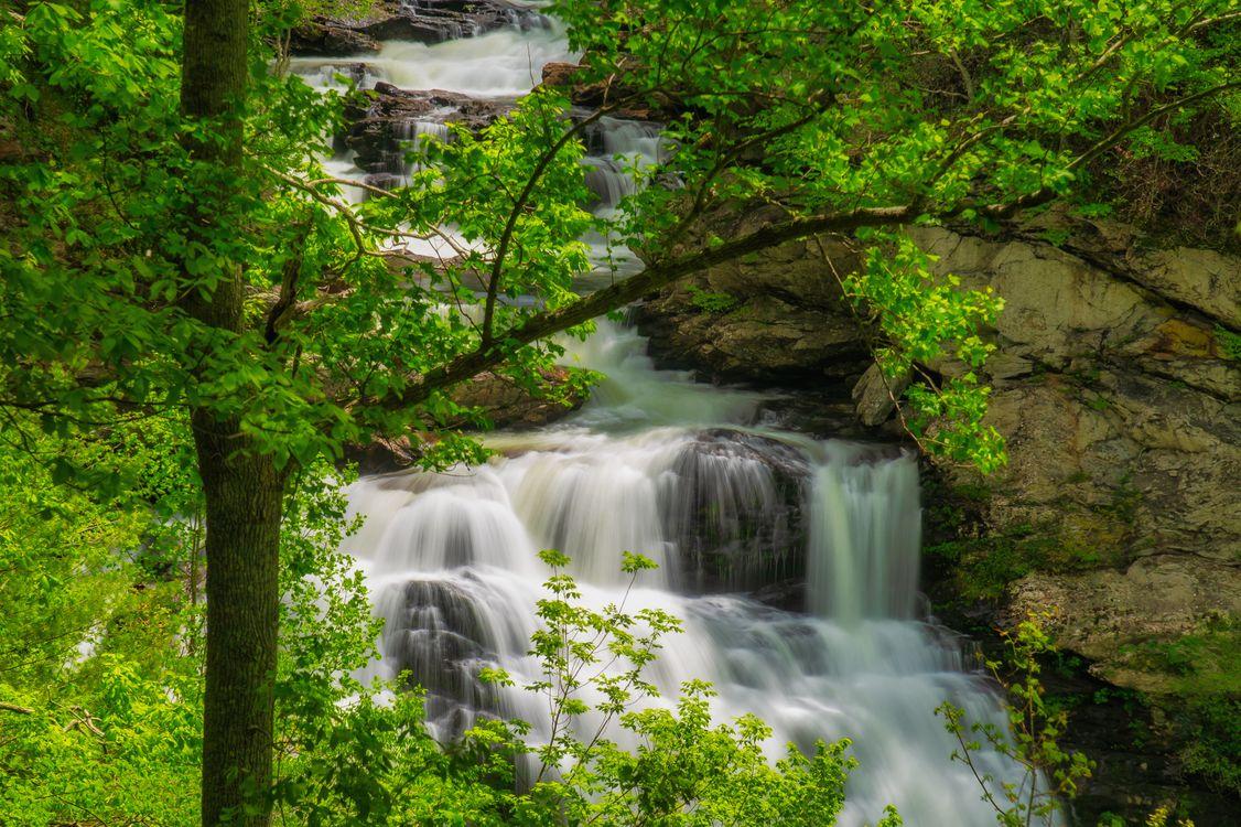 Фото бесплатно Cullasaja River Gorge, North Carolina, водопад, скалы, деревья, пейзаж, пейзажи - скачать на рабочий стол