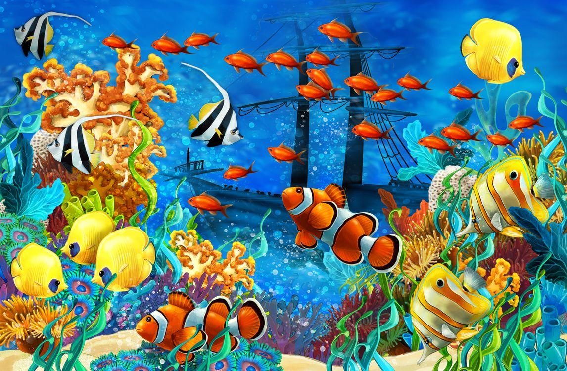 Обои рыбы, затонувший корабль, рифы картинки на телефон