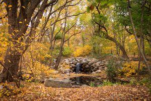 Заставки осень,лес,парк,деревья,водопад,камни,водоём