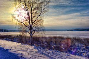 Бесплатные фото Река Ангерман,Крамфорс,Швеция закат,зима,деревья,небо,природа