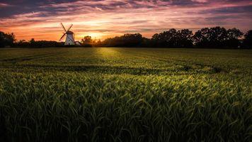 Бесплатные фото закат,поле,колосья,ветряная мельница,деревья,пейзаж