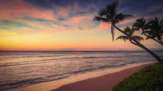 Бесплатные фото пляж,закат,океан,побережье,вечером,отдых,песок,страна,пальма,пальмовые деревья,панорама бич,остров