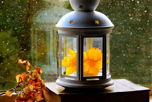 Antique lantern with autumn leaves