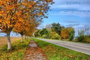 Фото бесплатно hagenbach, осень, leave