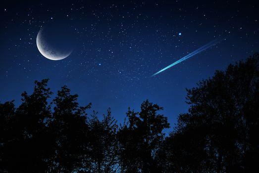Бесплатные фото ночь,луна,планета,комета,небо,деревья,сумерки,силуэты,звёзды,пейзаж