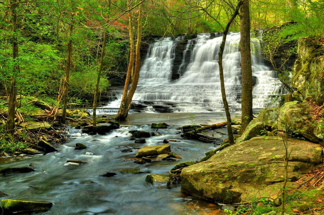 Обои лесной водопад, пороги, течение картинки на телефон
