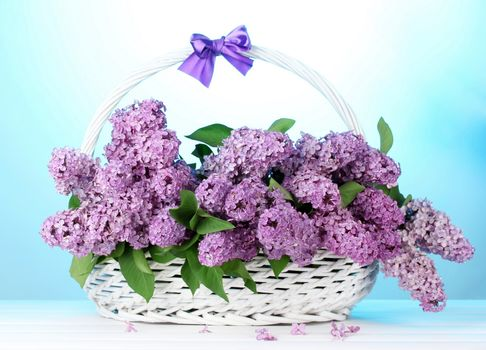 Beautiful photos on the theme of the lilac, a bouquet of lilacs