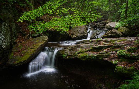 Государственный парк в Пенсильвании