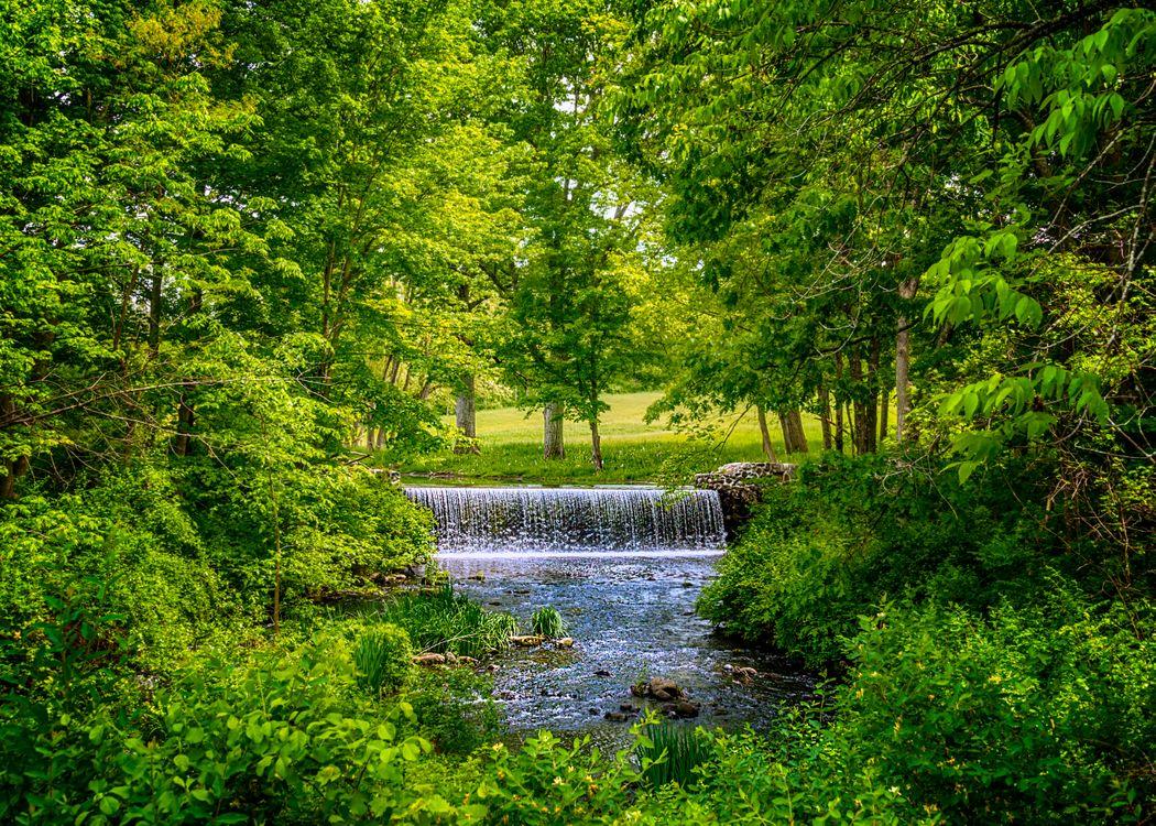 Фото бесплатно природа, лето, река - на рабочий стол