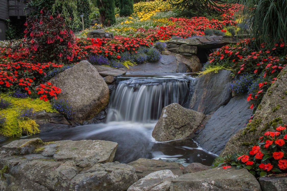 Летний водопадик с цветами · бесплатная заставка