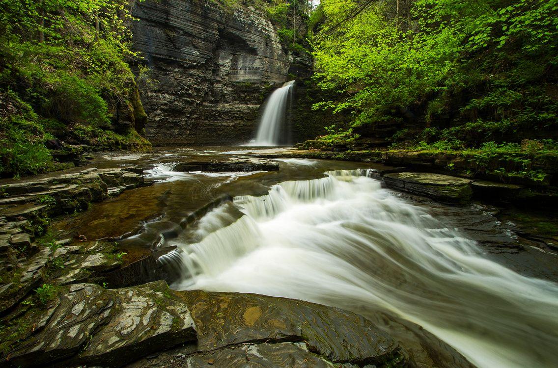 Водопад и ручей · бесплатное фото
