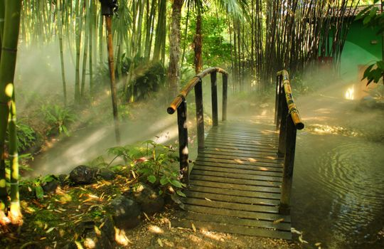 Photo free bamboo, bridge, Italy