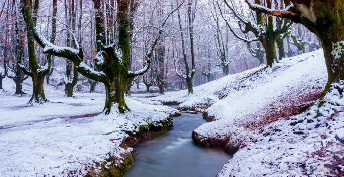 Photo free river, Basque country, nature