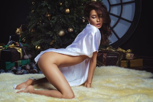 Brunette posing at the Christmas tree · free photo