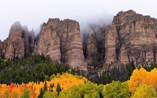 Заставки деревья, осень, пейзажи