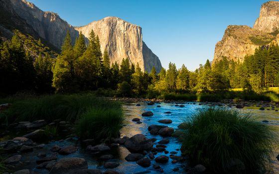 Фото бесплатно панорама, лес, национальная