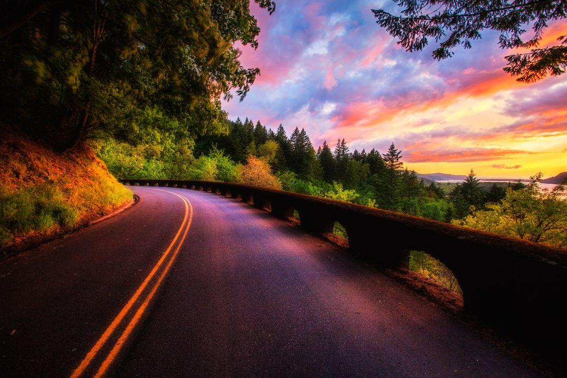 Обои Columbia River Gorge, Road at Sunset, закат, дорога, небо, деревья, пейзаж картинки на телефон