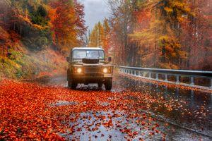 Заставки пейзаж, осенние листья, автомобиль