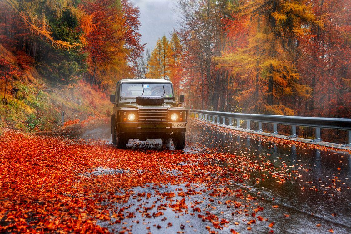 Фото бесплатно пейзаж, осенние листья, автомобиль - на рабочий стол