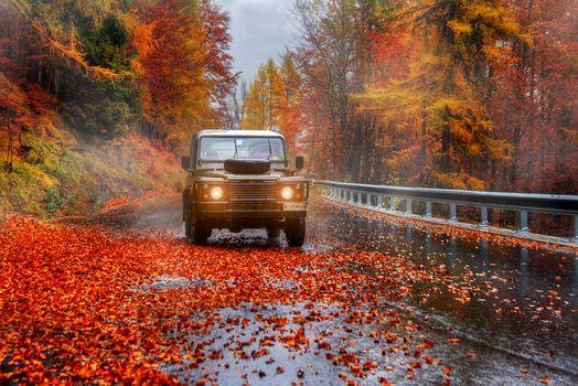 Фото бесплатно пейзаж, осенние листья, автомобиль