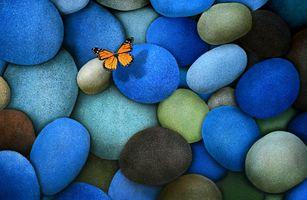 Заставки синий, яркие цвета, коричневый, бабочка, композиция, бабочка монарх, тень, камни