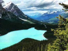 Бесплатные фото Peyto Lake,Banff National Park,Alberta,Canada,горы,озеро,лес
