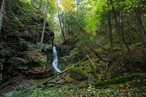 Фото бесплатно лес, деревья, водопад, скалы, природа, пейзаж
