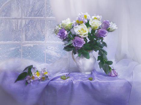 Photo free background, still life, flowers