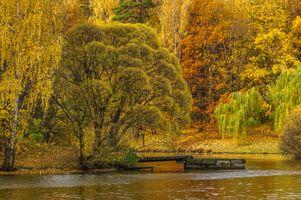 Фото бесплатно осень в москве, царицынский музей-заповедник, осенние краски