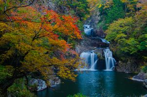 Photo free autumn, waterfall, forest