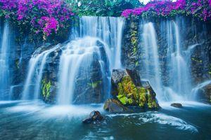 Бесплатные фото водопад,скалы,поток,цветы,мох,течение,природа