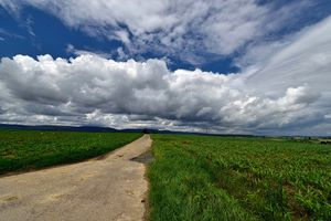 Фото бесплатно облака, поле, красивое