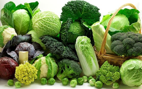 Photo free vegetables, cabbage, broccoli