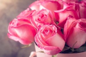Photo free bouquet, roses, flowers