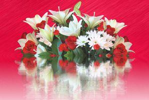 Фото бесплатно букет, цветок, красивый букет