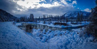 Бесплатные фото Крэнбрук,Канада,зима,горы,деревья,речка,снег