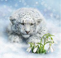 Фото бесплатно Снежный барс, дикая кошка, Ирбис, морда, взгляд, цветы, подснежники, art