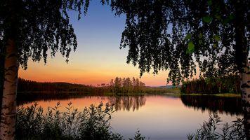 Бесплатные фото закат,озеро,деревья,ветки деревьев,растения,природа,пейзаж