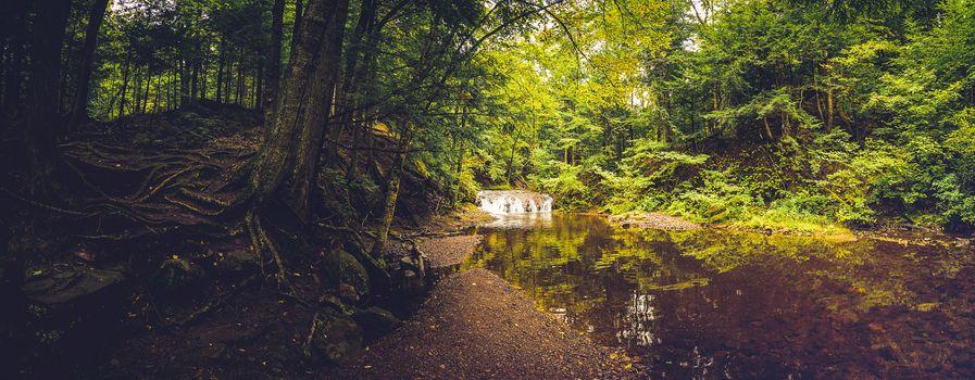 Фото бесплатно панорама, водопад, лес