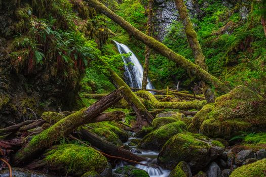 Photo free Lower Dry Creek Falls, Washington, waterfall