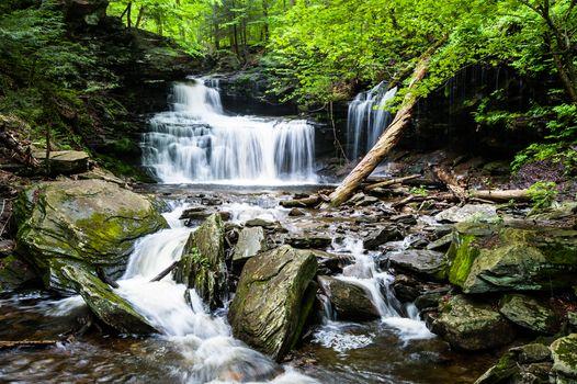 Красивый ручей · бесплатное фото