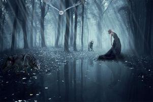 Заставки девушка, деревья, сова