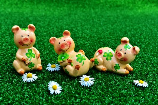 Заставки свинья, трава, символ года свиньи