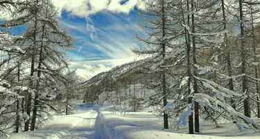 Бесплатные фото зима,горы,снег,дорога,деревья,домик,пейзаж