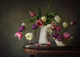 Бесплатные фото натюрморт,ваза,цветы,стол,тюльпаны